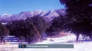 swpre colorado durango area best 200k colorado family ready deal 3 wooded acres super views