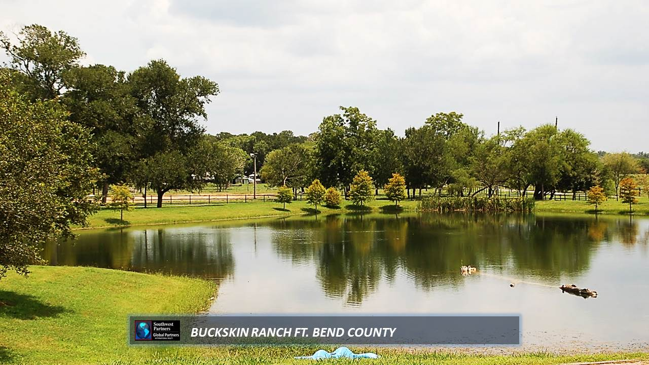 Reduced 300k Best Houston Ranch Deal Best Ft Bend